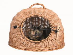 Cat Basket with Grid
